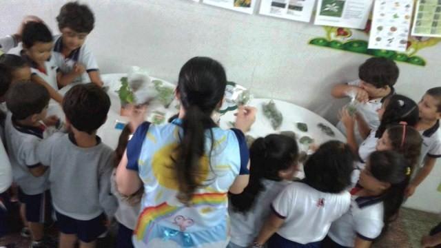 Comemoração do Folclore no Colégio O Saber
